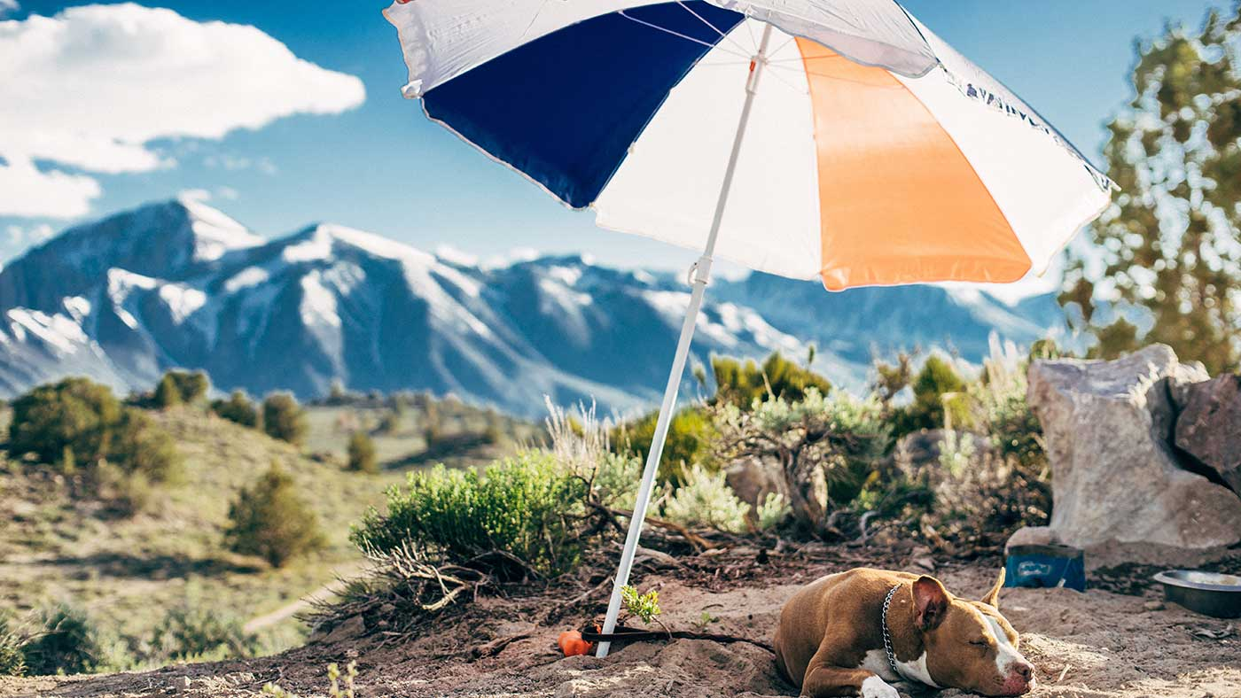 guide-to-patio-umbrella-repair-parts.jpg